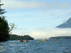 Sea Kayaking in Clayoquot Sound
