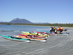 Sea Kayak Tours in Clayoquot Sound