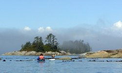 Sea Kayaking British Columbia