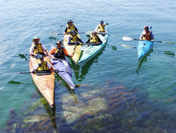 Sea Kayaking Day Trips